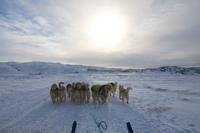 Интересный факт о футболе в Гренландии