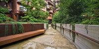 """Уникальный городской """"дом на дереве"""" защищает своих жильцов от шума и загрязнений"""