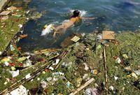 22 душераздирающих фото результата загрязнения планеты, после которых ты всегда будешь утилизировать мусор