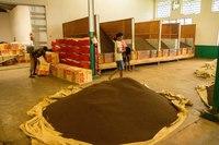 Как производят гранулированный чай в Индии