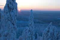 29 сказочных мест в Финляндии, которые необходимо посетить помимо Хельсинки