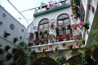 Фестиваль цветов в испанских патио. Красивая жизнь простых испанцев
