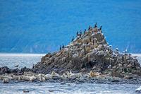 Первозданная Камчатка: Тихий океан