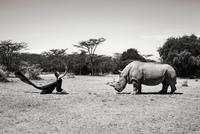 5 нереально крутых фотосессий с исчезающими животными