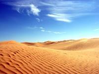 5 опасных хищников, которых можно встретить в пустыне