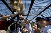 7 любопытных фото из чилийского зоопарка, где в клетках сидят люди, а не звери