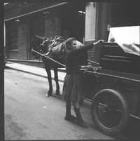 15 красочных снимков о том, как жили цыгане в 60-е годы прошлого века
