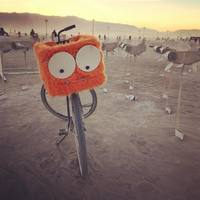 30 сюрреалистических снимков Burning Man 2015