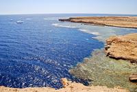 Самое чистое море на планете и почему в нем нельзя искупаться