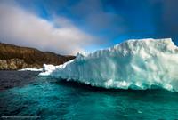 Медвежий угол в Арктике