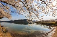 Как наступает весна в разных уголках планеты