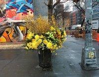 Как мусорные баки в Нью-Йорке превращаются в гигантские вазы с цветами