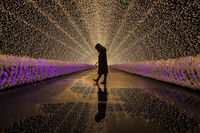 15 чудесных фото претендентов на звание National Geographic Travel Photographer 2017