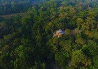 Пара потратила 26 лет на восстановление тропического леса, купленного ими в 1991 году