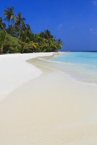 Экскурсия на местный остров в Kurumba Maldives