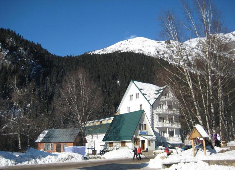 позитивному лыжи в домбае на прокат цена сирень, соцветие