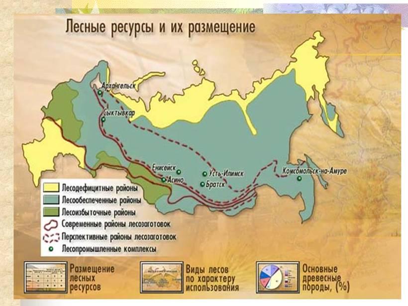 Лесопромышленный комплекс россии best forex bot