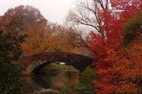 12 снимков, доказывающих, что осень украшает наш мир