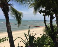 Пляж Агонда в марте