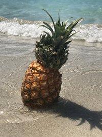 Обеденный перерыв с ананасом