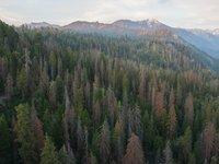 Грустные фото о том, что люди и изменение климата сделали с национальными парками США