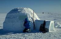 Жилище эскимосов: почему вход в иглу всегда открыт и расположен так низко