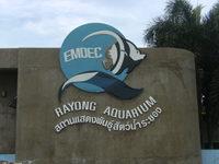 Культпоход в районгский аквариум