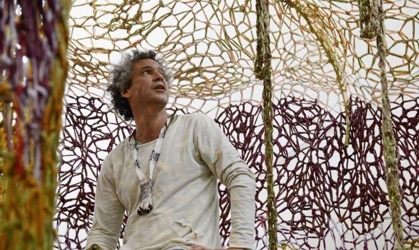 Обвязал крючком: художник связал гигантское дерево на вокзале Цюриха