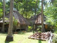 Ко Ланта, отельная территория, сбор кокосов