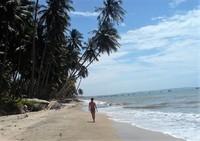 На диком пляже Муйне довольно таки живописно