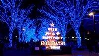 Рождество в Yoyogi Park