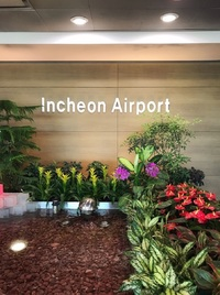 Корейский международный аэропорт в Сеуле - Инчхон