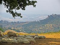 Тосканские просторы, долина Валь Д'Орча